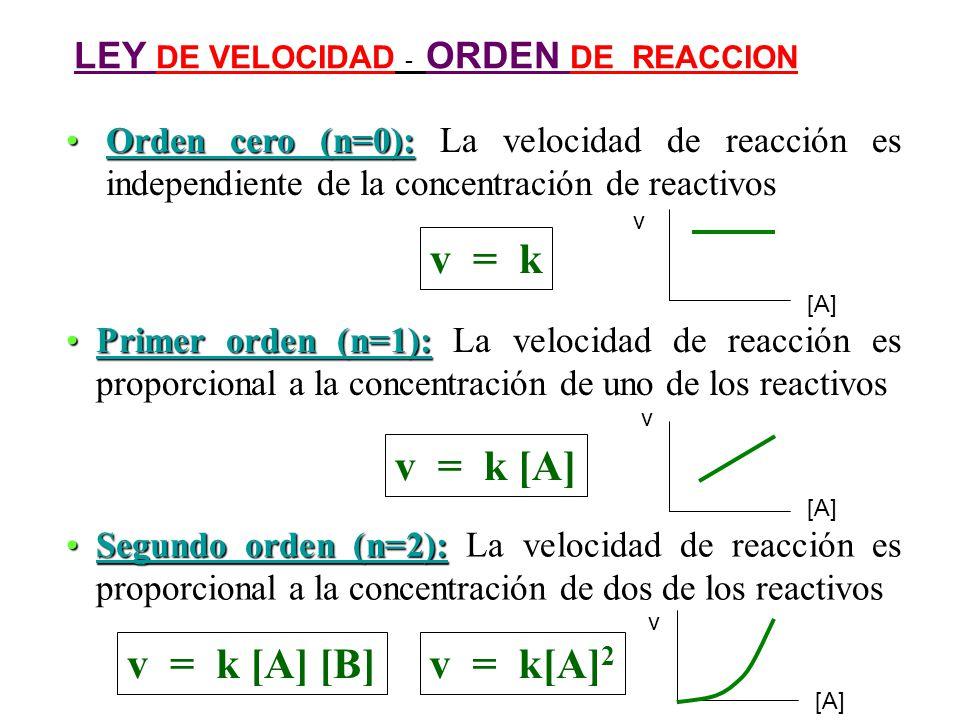 v = k v = k [A] v = k [A] [B] v = k[A]2